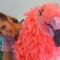 Lezen_Oke!_Flaminga_004
