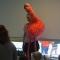 Lezen_Oke!_Flaminga_018
